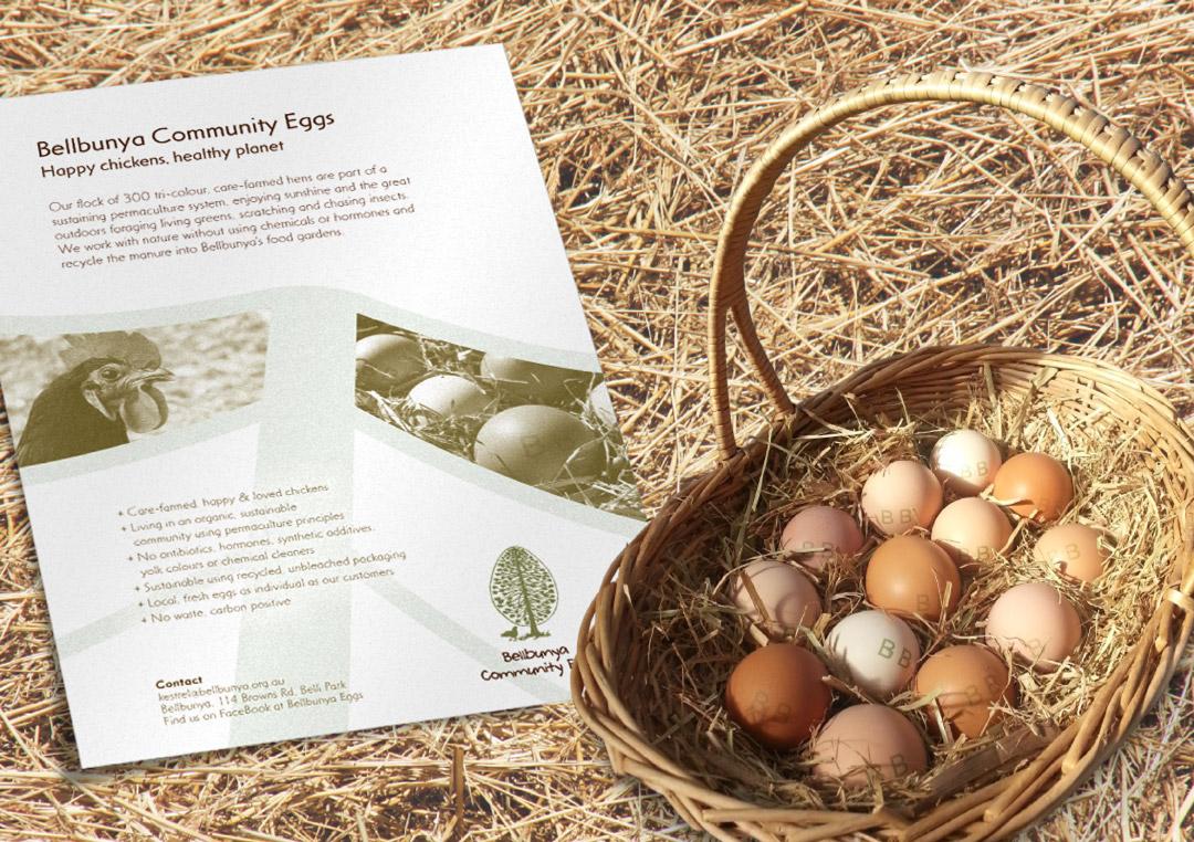 Egg flyer